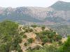 Aufstieg zum Castell d'Alaró